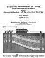 Economic Assessment of Using Non-Metallic Materials in the Direct Utilization of Geothermal...